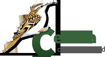 Certhia Consulting